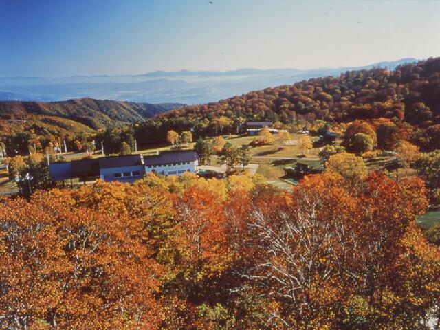 野沢温泉上ノ平高原の写真
