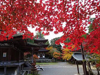 西明寺(湖東三山)