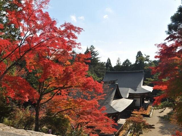 高雄山神護寺の写真