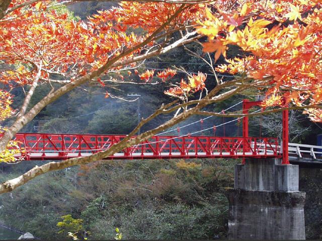 武田尾温泉の写真