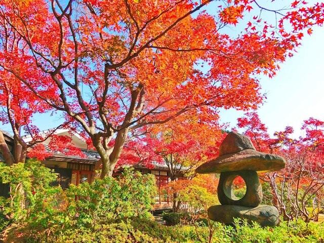 神戸市立須磨離宮公園の写真