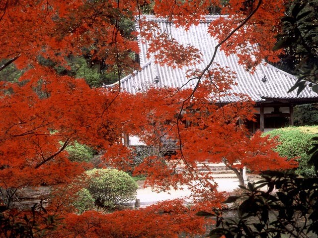 長岳寺の写真