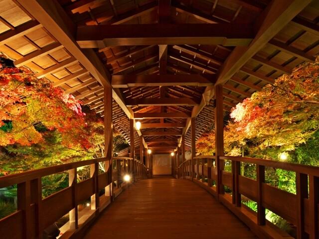 姫路城西御屋敷跡庭園 好古園の写真