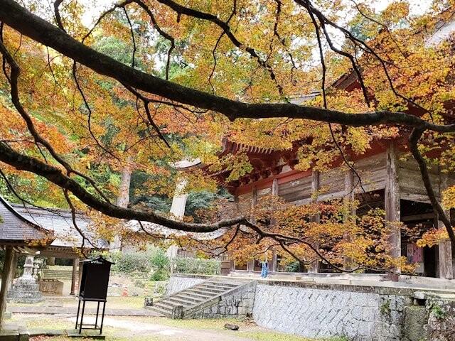 鰐淵寺の写真