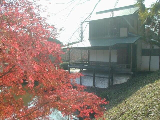 近水園の写真