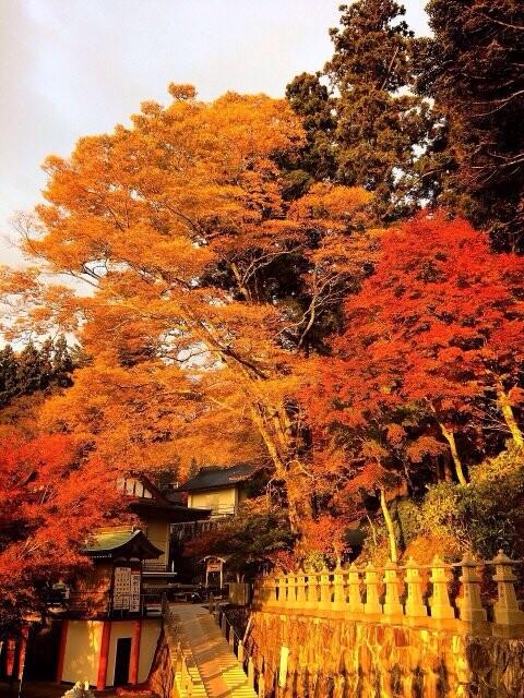 雲辺寺の写真