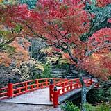 宮島(紅葉谷公園)