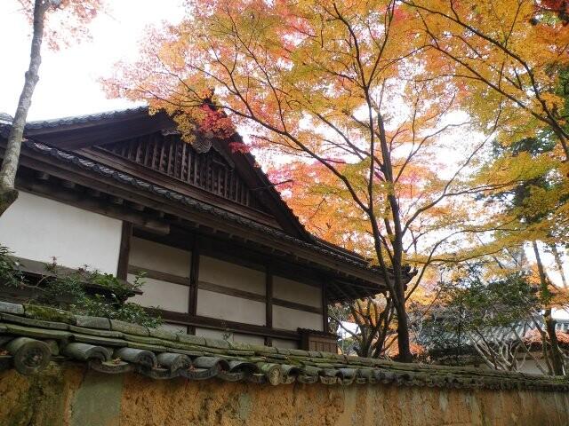 覚苑寺の写真