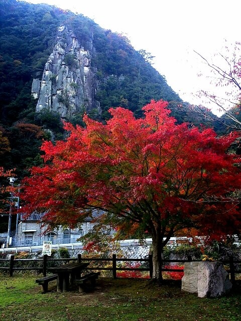 深山峡(東広島)の写真