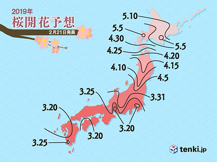 桜の開花予想 - 日本気象協会 te...