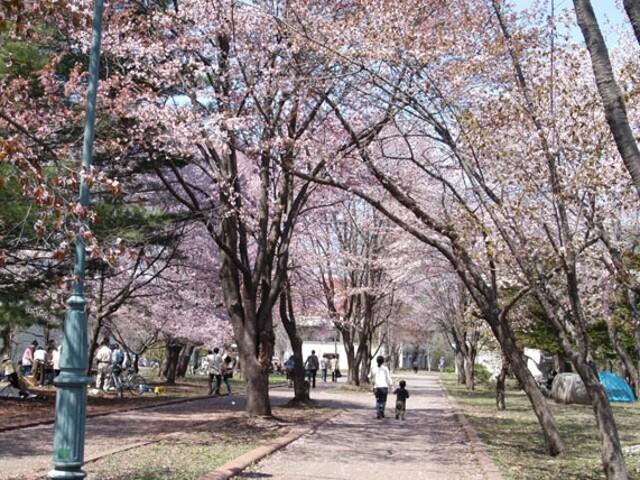 帯広市緑ケ丘公園の写真