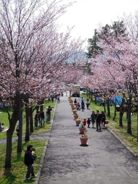 栗山公園の写真