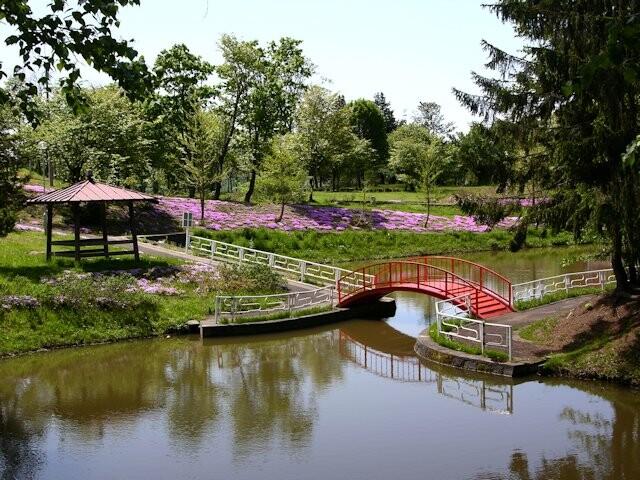 北竜町金比羅公園の写真