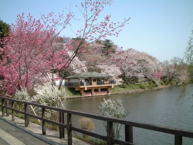 県立三ツ池公園の写真
