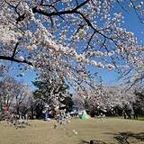 天朝山公園