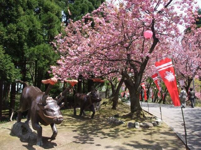 倶利伽羅県定公園の写真