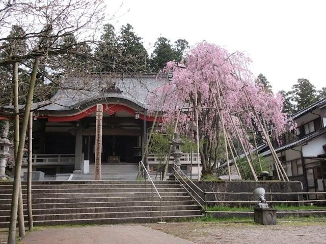 安居寺公園の写真