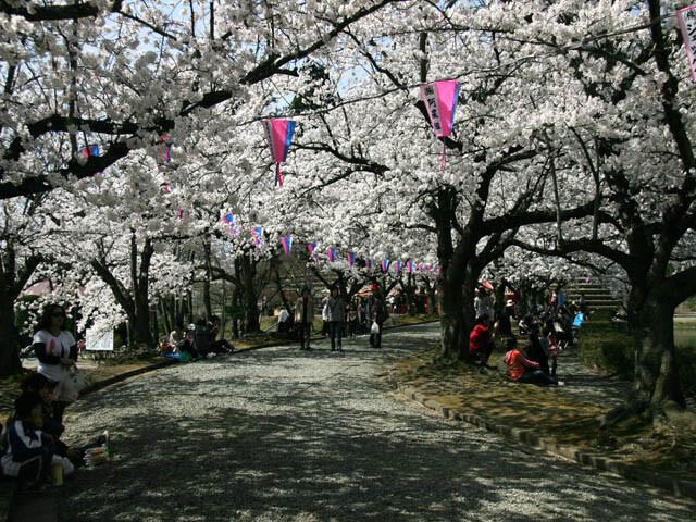 堂ノ前公園の写真