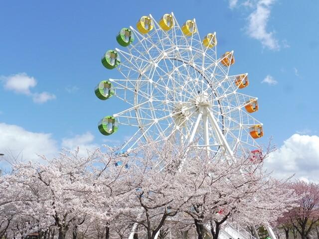 八戸公園の写真