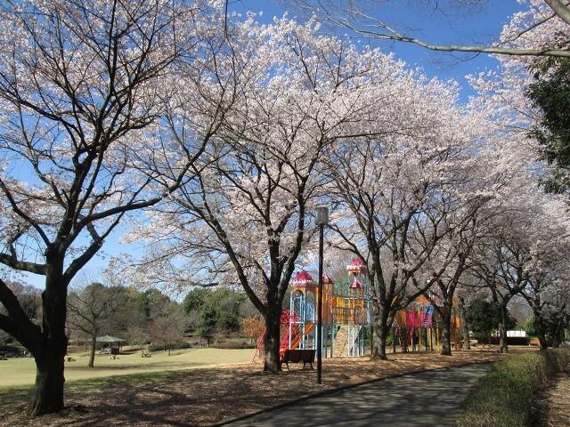 壬生町総合公園の写真