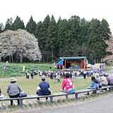 釜ノ越サクラ2世木(勝弥桜)・薬師ザクラ