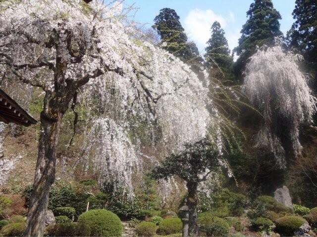 玉川寺の写真