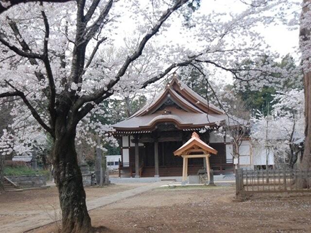 弘経寺の写真