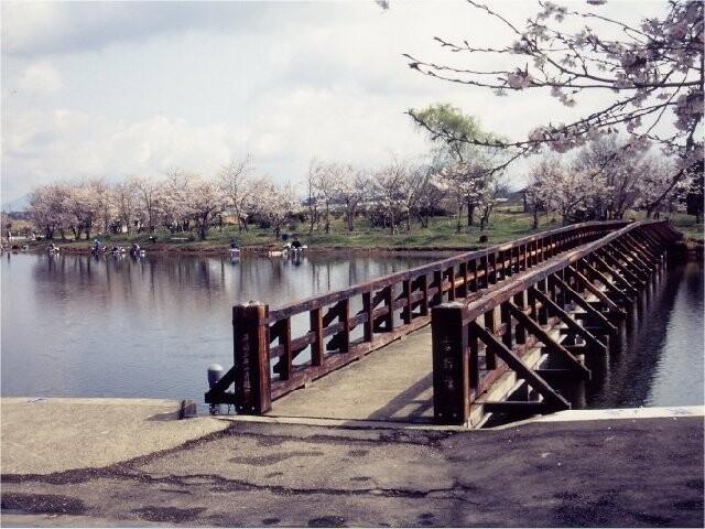吉野公園の写真
