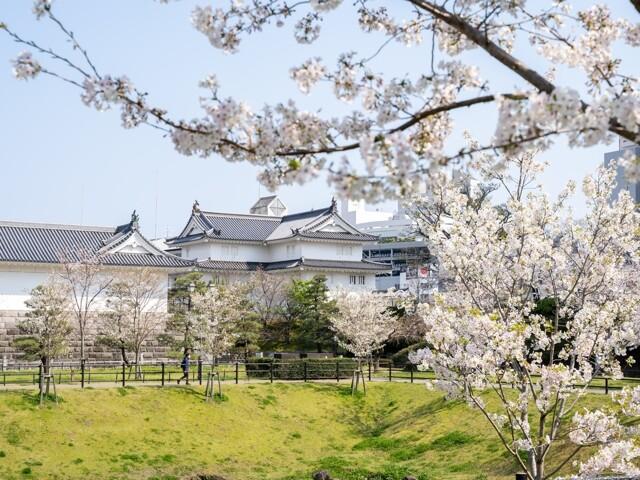 駿府城公園の写真