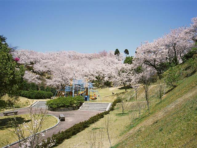 開山公園の写真