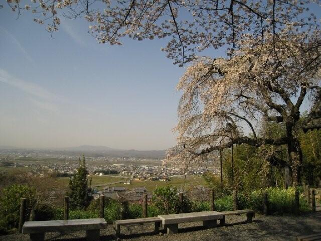 地蔵禅院の写真