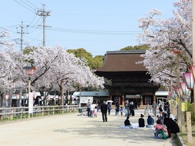 尾張大國霊神社(国府宮)の写真