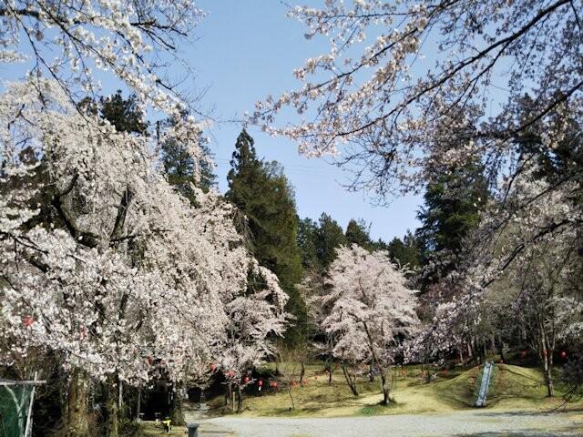 愛宕公園の写真