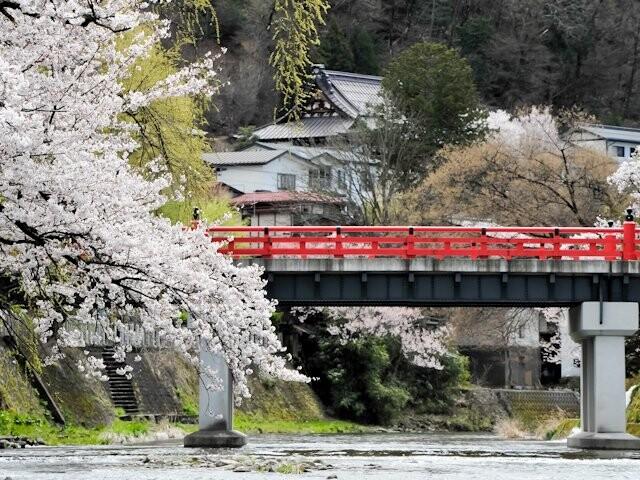中橋周辺の写真