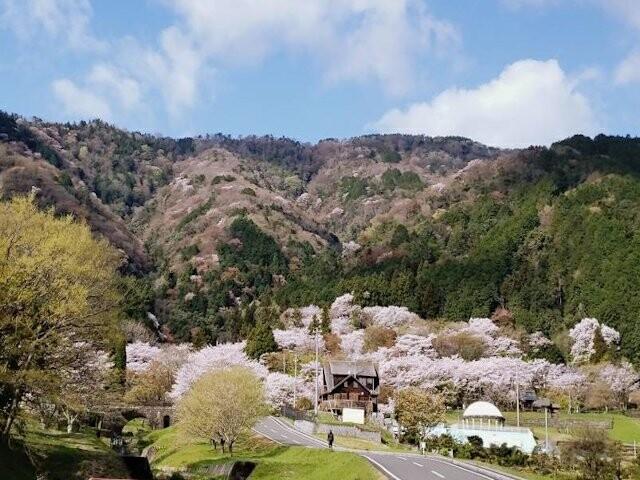 霞間ヶ渓の写真
