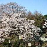 「国史跡」釈迦山 百済寺(湖東三山)