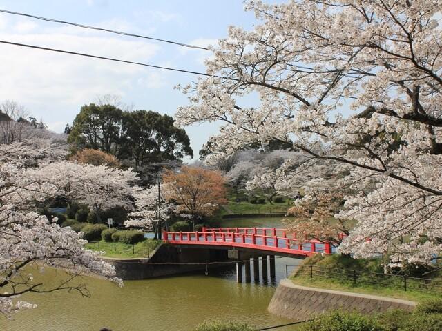 甘木公園の写真