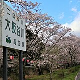 久礼大坂谷川沿い