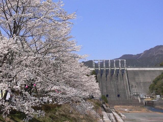 早明浦ダム堰堤直下の写真