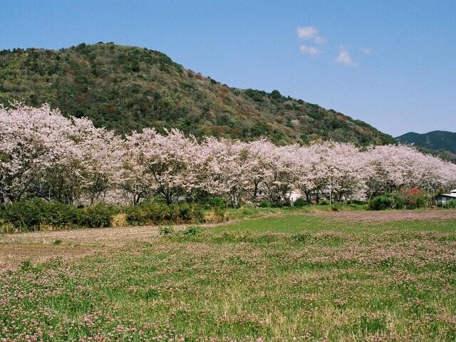 鮎乃瀬公園の写真