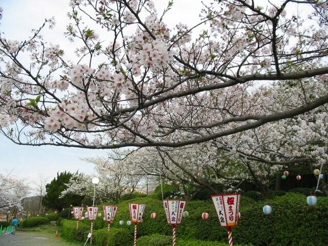 江津丸子山公園の写真