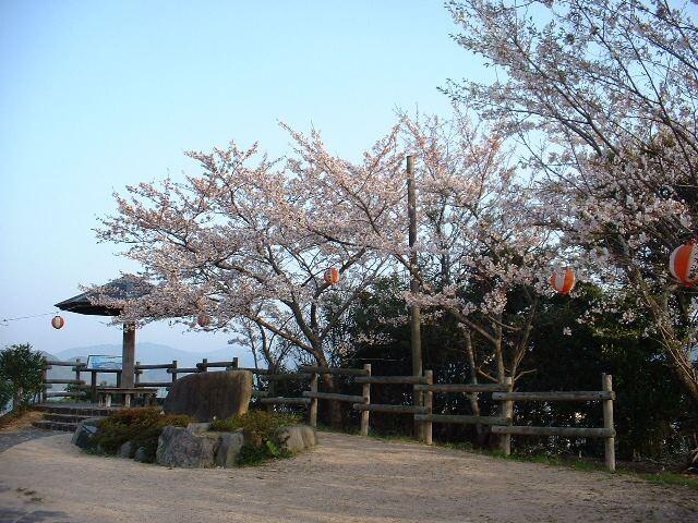 王子山公園の写真