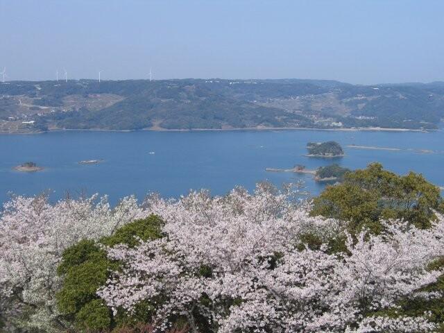 大山公園の写真