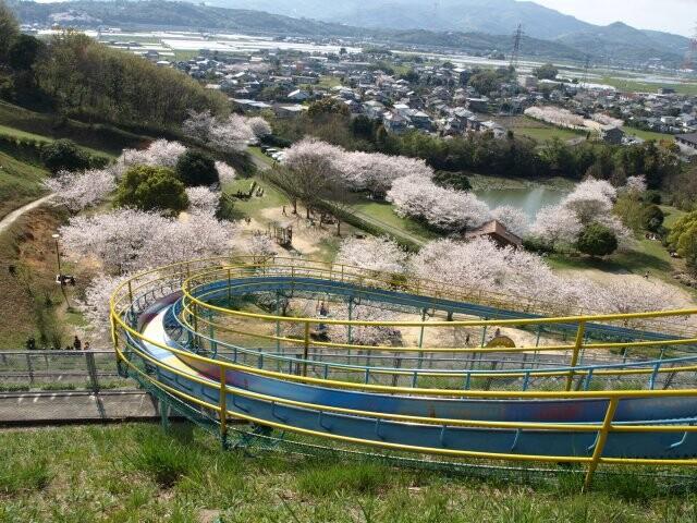 岡岳公園の写真