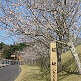 花瀬自然公園