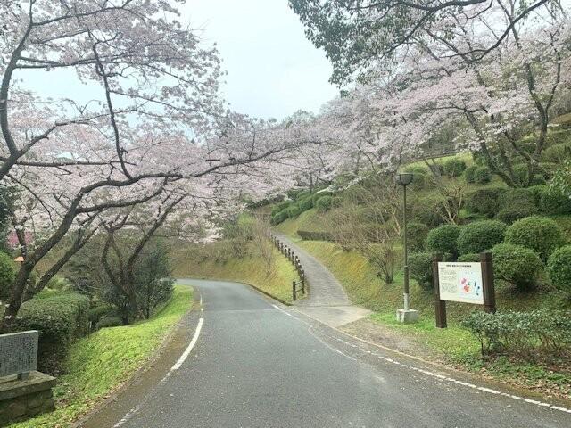 大津山公園の写真