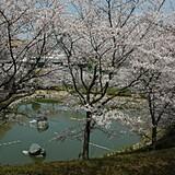 飯山総合運動公園