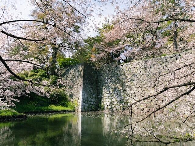 久留米城跡の写真