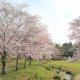 京都府立関西文化学術研究都市記念公園(けいはんな記念公園)