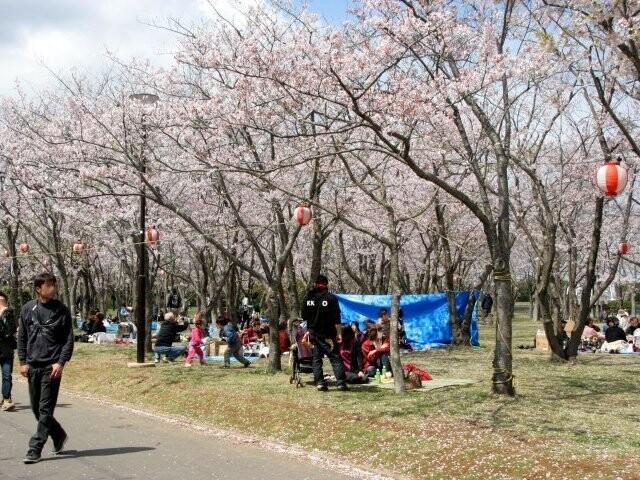 神之池緑地公園の写真